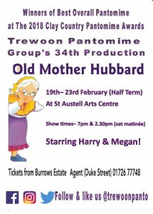 Trewoon Panto Poster
